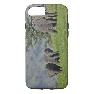 Coque iPhone 8/7 Éléphant africain femelle avec le bébé, Loxodonta