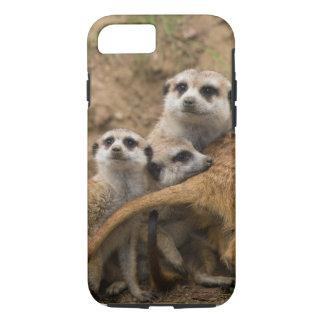 Coque iPhone 8/7 Il n'était pas moi meerkats.