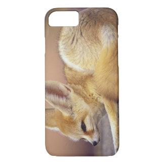 Coque iPhone 8/7 L'Afrique du nord. Zerda de Fennec Fennecus)