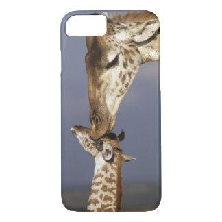 Coque iPhone 8/7 L'Afrique, Kenya, masai Mara. Girafes (girafe