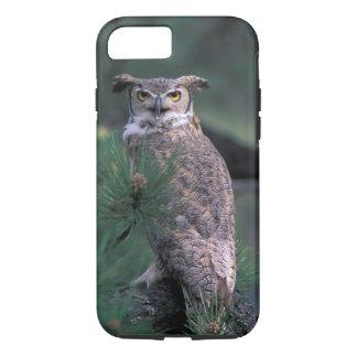 Coque iPhone 8/7 Les Etats-Unis, Co, Colorado Springs. Grand hibou