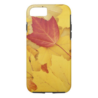 Coque iPhone 8/7 Les Etats-Unis, Washington, arborétum de pinson,