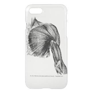 Coque iPhone 8/7 Muscles antiques d'art d'anatomie du coffre