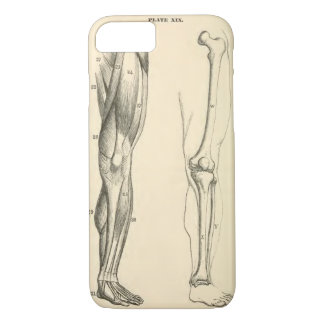 Coque iPhone 8/7 Muscles vintages de l'anatomie   | et os de la