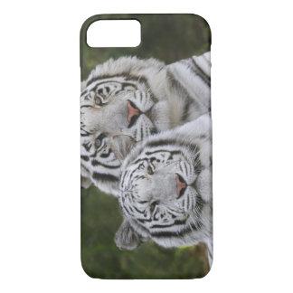 Coque iPhone 8/7 Phase blanche, tigre de Bengale, Tigre