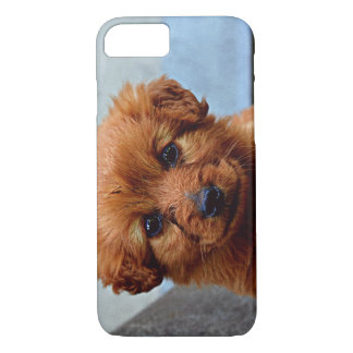 Coque iPhone 8/7 Photo de portrait de chiot de Brown
