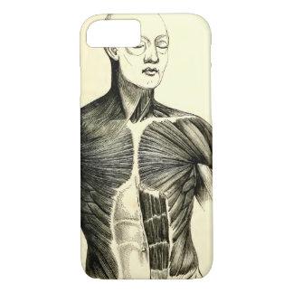 Coque iPhone 8/7 Torse vintage de l'anatomie | (circa 1852)