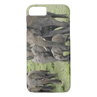 Coque iPhone 8/7 Troupeau d'éléphant africain, africana de