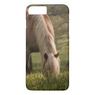 Coque iPhone 8 Plus/7 Plus Chevaux frôlant dans le pré, crique de Cades,