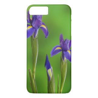 Coque iPhone 8 Plus/7 Plus Fleurs d'iris