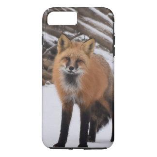 Coque iPhone 8 Plus/7 Plus Fox