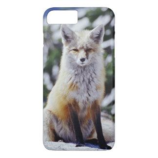 Coque iPhone 8 Plus/7 Plus Fox rouge se reposant sur la banque de neige,