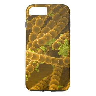 Coque iPhone 8 Plus/7 Plus Image de SEM de pollen et de Stamens de