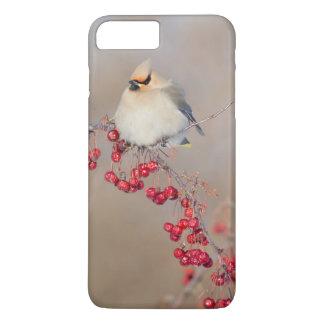 Coque iPhone 8 Plus/7 Plus Jaseur de Bohème en hiver, Canada