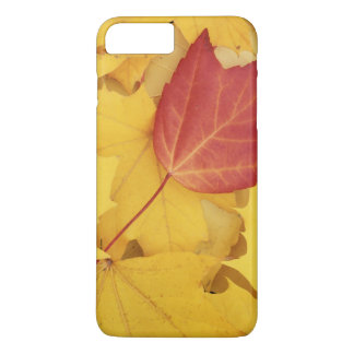 Coque iPhone 8 Plus/7 Plus Les Etats-Unis, Washington, arborétum de pinson,