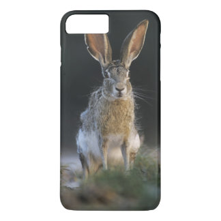 Coque iPhone 8 Plus/7 Plus Lièvre à queue noire, californicus de Lepus, 2