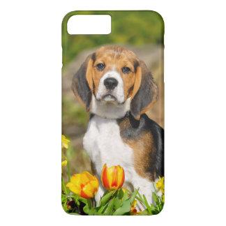 Coque iPhone 8 Plus/7 Plus Portrait mignon de chiot tricolore de beagle,