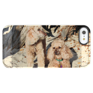 Coque iPhone Clear SE/5/5s Épuisement - caniches - Romeo Remy