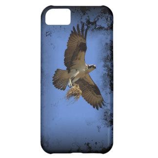 Coque iphone de balbuzard de vol (faucon de poisso coque iPhone 5C
