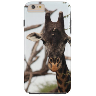 Coque iphone de girafe