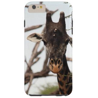 Coque iphone de girafe coque tough iPhone 6 plus