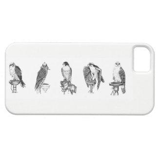 Coque iphone de portraits de fauconnerie