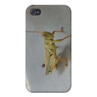 Coque iphone de sauterelle coque iPhone 4/4S