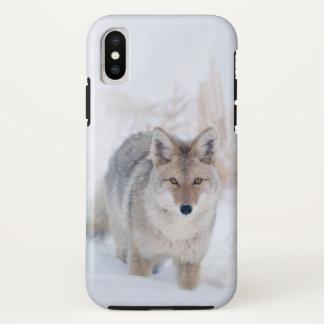 Coque iPhone X Coyote dans la neige au cas d'iphoneX de