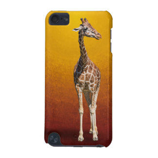 COQUE iPod TOUCH 5G GIRAFE