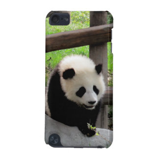 Coque iPod Touch 5G panda