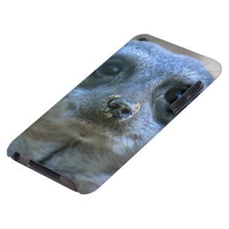 Coque iPod Touch Case-Mate Meerkat drôle