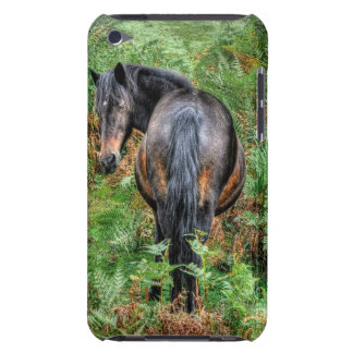 Coque iPod Touch Nouveaux poney de forêt de baie sauvage et fougère