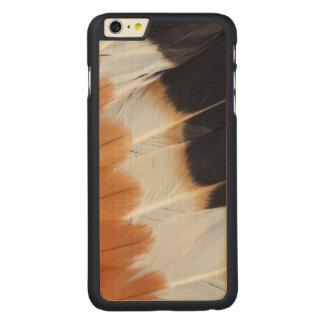 Coque Mince En Érable iPhone 6 Plus Abrégé sur du nord plume de vanneau