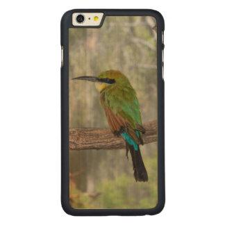 Coque Mince En Érable iPhone 6 Plus Oiseau d'abeille-mangeur d'arc-en-ciel, Australie