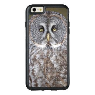 Coque OtterBox iPhone 6 Et 6s Plus Plan rapproché de hibou de grand gris, Canada