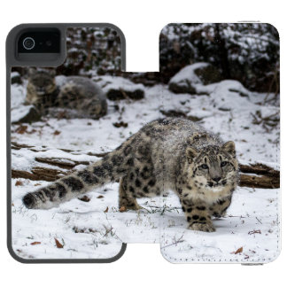 COQUE-PORTEFEUILLE iPhone 5 INCIPIO WATSON™