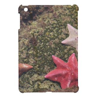 Coque Pour iPad Mini Étoiles de mer vivantes (4).JPG