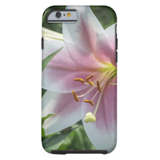 Coque Tough iPhone 6 Caisse blanche et rose de l'iPhone 6/6s de fleur