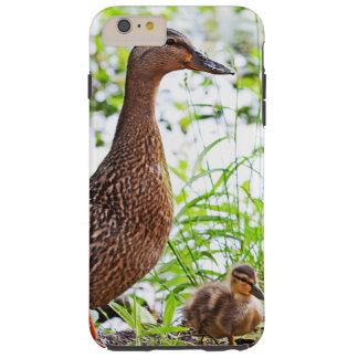 Coque Tough iPhone 6 Plus Mallard et canetons par Shirley Taylor