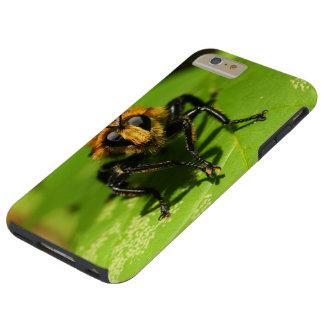 Coque Tough iPhone 6 Plus Mouche de voleur
