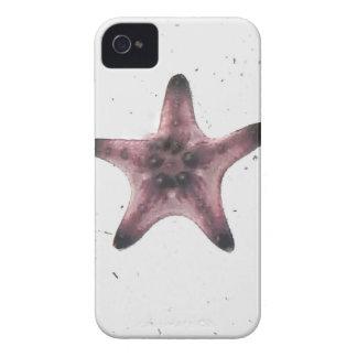 Coques Case-Mate iPhone 4 Étoiles de mer sur le motif blanc de minimalisme