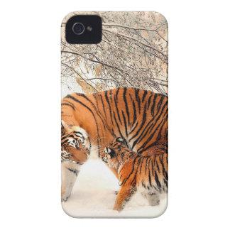 Coques Case-Mate iPhone 4 Tigre et petit animal - tigre