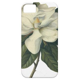 Coques Case-Mate iPhone 5 Fleurs blanches de floraison de fleur de magnolia