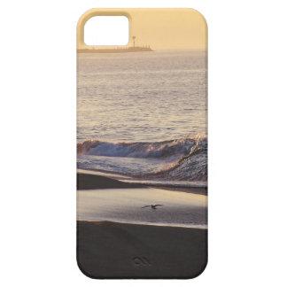 Coques Case-Mate iPhone 5 La plage d'océan ondule la côte de la Californie