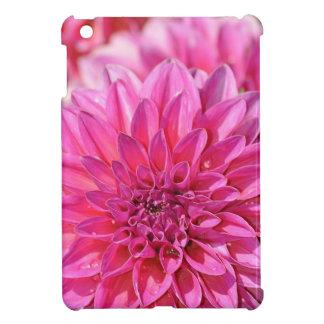 Coques iPad Mini Belles fleurs roses de fleur de dahlia