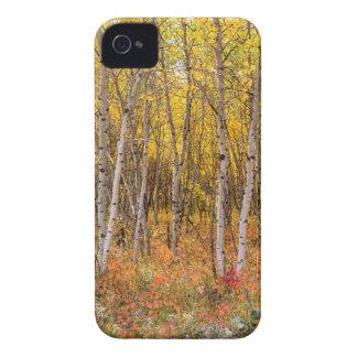 Coques iPhone 4 Case-Mate Campagne colorée