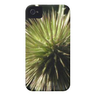 Coques iPhone 4 Case-Mate Cardère sur l'affichage