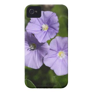 Coques iPhone 4 Case-Mate Liseron de roche bleue (sabatius de convolvule)
