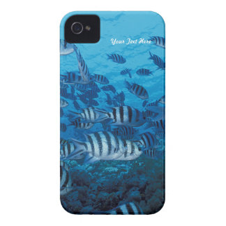 Coques iPhone 4 École rayée de poissons - personnaliser