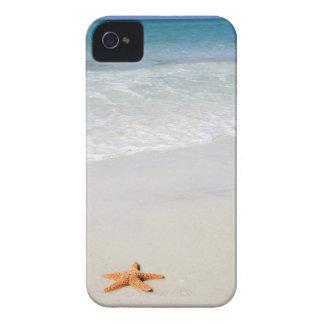 Coques iPhone 4 Étoiles de mer oranges sur une plage sablonneuse
